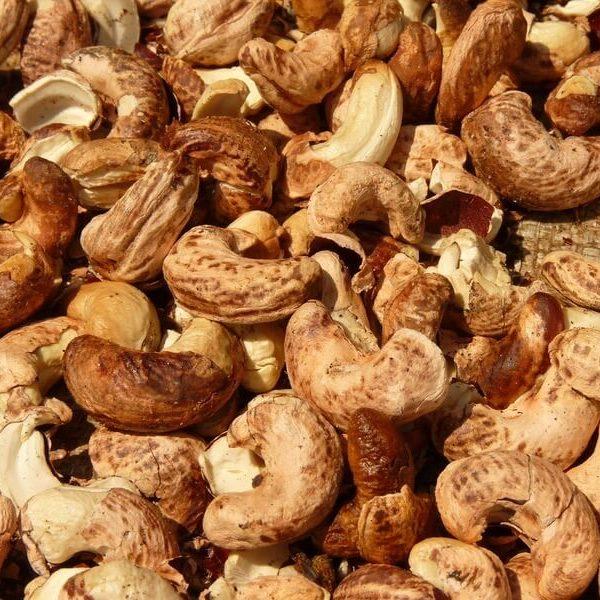 cashew-nut-52066_1280