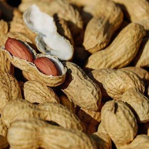 nuts-1736520_1280