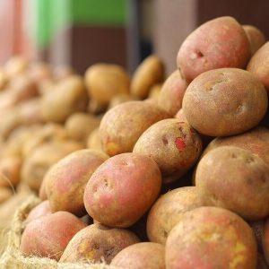 potato-1529747_1280