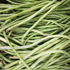 rsz_french-bean-basket-214266_1280