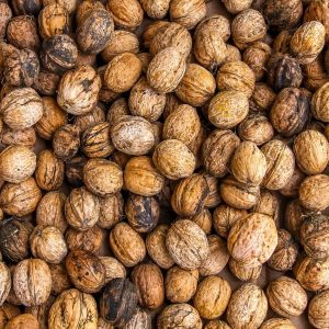 walnuts-1354819_1920-1
